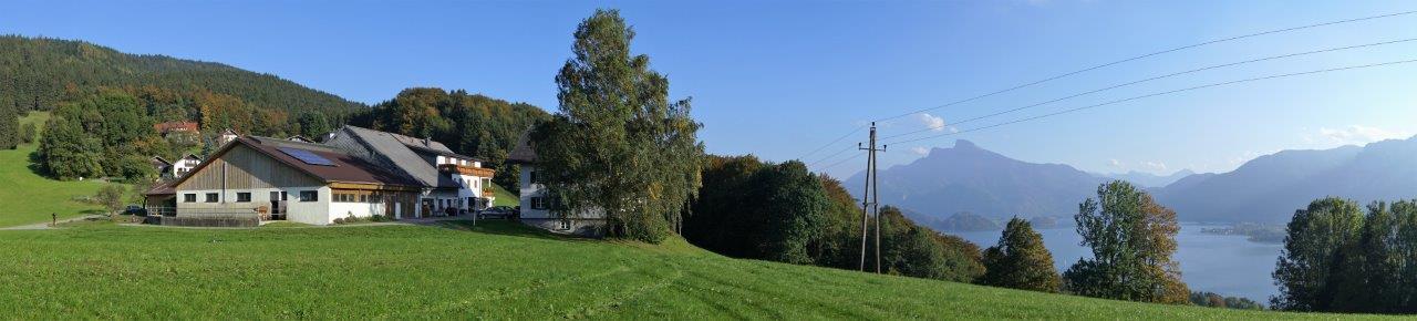 panorma-ferienwohnung-mondsee-gassner-1