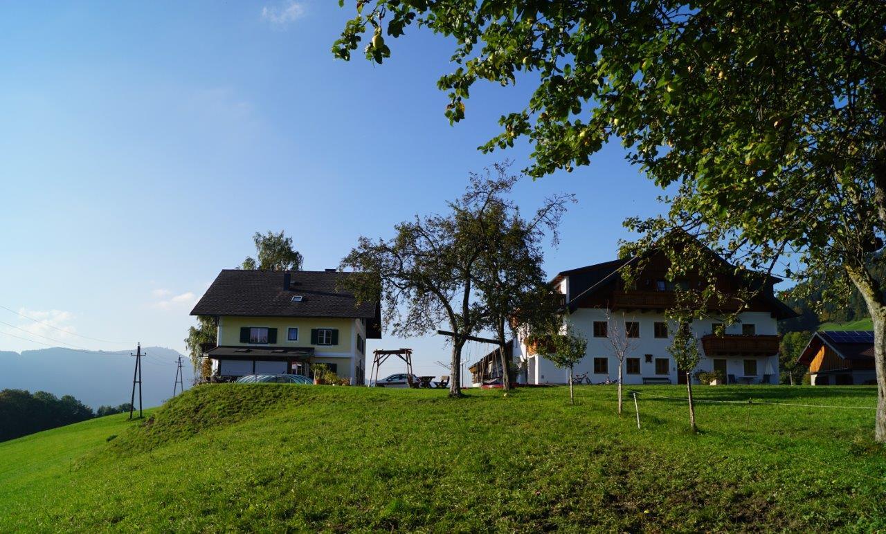 ferienwohnung-mit-pool-aussicht-am-mondsee-ferienhof-gassner-at-3